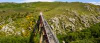 Cycle over the grand Poolburn Viaduct | Lachlan Gardiner