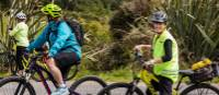 West Coast Wilderness Cycle Trail | Lachlan Gardiner