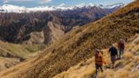 Walking through the tussocklands of Ben Lomond Station |  <i>Colin Monteath</i>