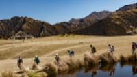 Tussock lands and Tarns of Ben Lomond Station |  <i>Colin Monteath</i>