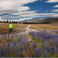 Pausing to take in the scenery on the Molesworth High Country cycle   Colin Monteath