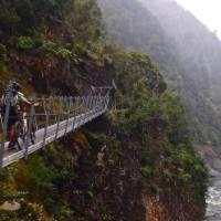 Swingbridge on the Old Ghost Road, West Coast, New Zealand.   Liam Stroud