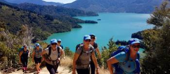 Trekking above Marlborough Sounds | Ross Daubney