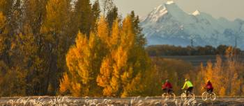 Stunning views of Mt Cook on the Alps to Ocean cycle trail | Colin Monteath