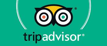 Adventure South TripAdvisor Excellence Award | Trip Advisor